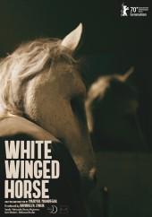 دانلود فیلم اسب سفید بالدار با کیفیت عالی